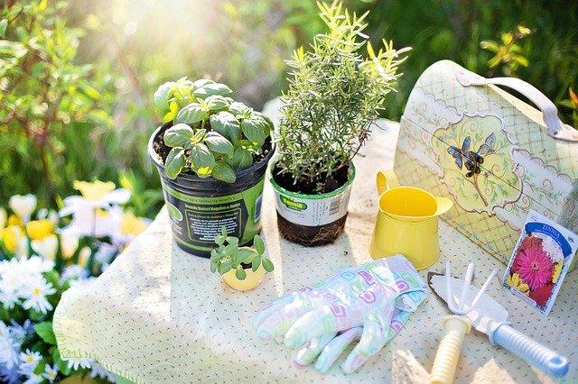 3 conseils pour bien acheter les outils de jardinage