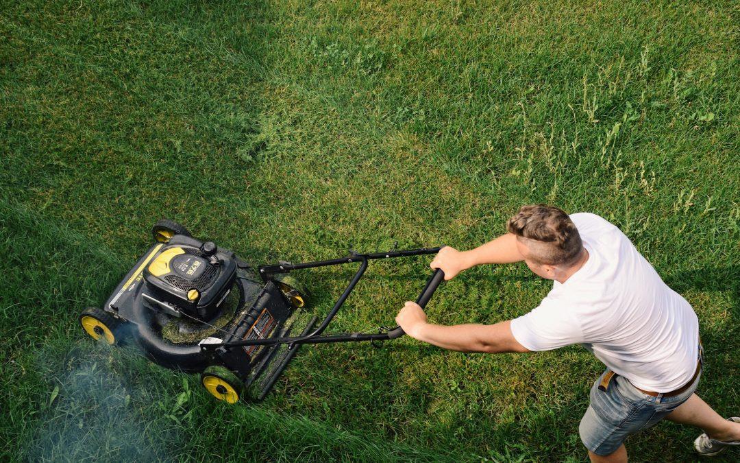 Comment prendre soin de son jardin ?